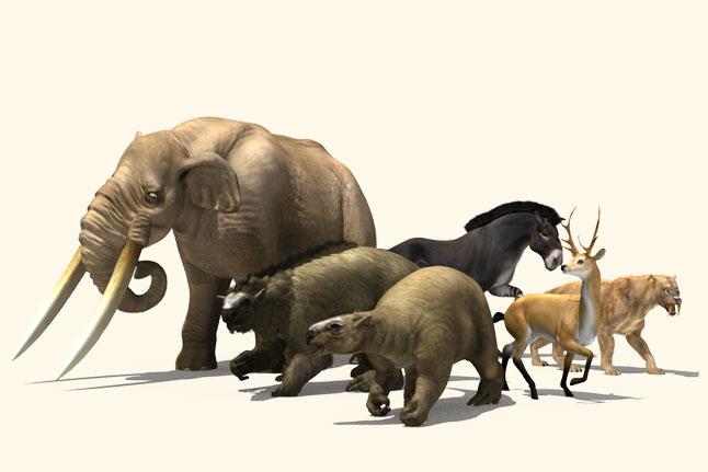 megafauna 30.000 años